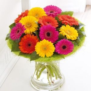 Mix Colour Gerbera Vase
