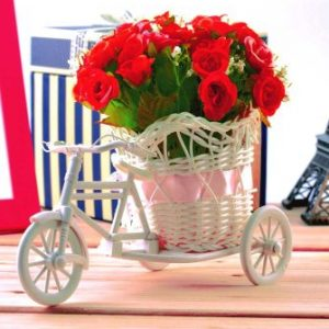 Beautiful red roses bicycle with 20 red roses