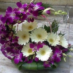 Gerberas Basket with Purple Orchids